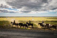 Horseriding on Iceland
