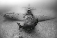 Underwater Photographer Jim Garland's Gallery: WRECKSHOT: P-47D Thunderbolt - DivePhotoGuide.com