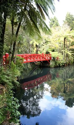 Pukekura Park Bridge - New Zealand