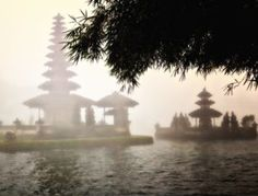 Many people visiting Indonesia just visit Bali. The island is on most travellers lists, even if it's for just two days. It's no surprise, there is plenty of things to do in Bali. If you organ… Bali Travel, Travel Usa, Ubud, Yoga Inspiration, Misty Day, Bali Honeymoon, Travel Design, Travel Memories, Cheap Travel