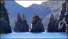 Kenai Fjords National Park, Resurrection Bay,