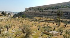 The Kidron Valley -  How Your Burial Can Point to Your Faith https://www.waynestiles.com/the-kidron-valley-your-burial-can-point-to-your-faith/