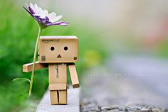 ImageFind images and videos about flower, danbo and carton on We Heart It - the app to get lost in what you love. Danbo, Cute Images, Cute Pictures, Cardboard Robot, Box Robot, Japanese Robot, Amazon Box, Little Boxes, Anime Art Girl