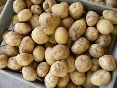 Home Joys: Canning Potatoes