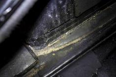 Storing a car, rats, mice, Dangers, Precautions