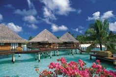 Wish I could go to Bora Bora today and stay for at least 6 months and enjoy the simple life.Overwater Bungalows at the InterContinental Bora Bora Le Moana Resort Dream Vacations, Vacation Spots, Vacation Club, Vacation Packages, Vacation Travel, Vacation Places, Places To Travel, Places To See, Bora Bora Photos