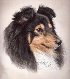 Shetland Sheepdog dog pet portrait, painting by artist Anne Zoutsos