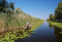 pescuit in Delta Dunarii - fishing in Danube Delta. Travel Around The World, Around The Worlds, Danube Delta, Beautiful Places, Beautiful Pictures, Europe, Bucharest, World Heritage Sites, Continents