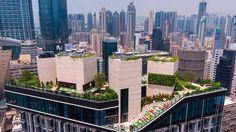 Voor de bewoners van een luxe toren in Hongkong heeft concrete een daklandschap ontworpen waar ze kunnen sporten, ontspannen en feesten.