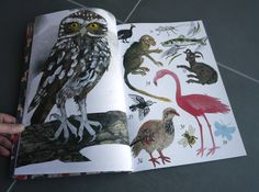 Mark Hearld's Menagerie