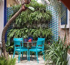 jardim-vertical-suspenso-paisagismo-Catê-Poli-palmeira-fênix-aspargos-pluma-samambaias-barbas-de-serpente (Foto: Gui Morelli/Editora Globo)