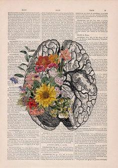 Springtime brain Nature Anatomy - Brain Flower - Anatomy Illustration - Medical Art Print - Brain W Flower Anatomy, Human Anatomy Art, Brain Anatomy, Anatomy Drawing, Don Du Sang, Brain Art, Medical Art, Medical Drawings, Kunst Poster
