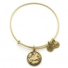 Capricorn Charm Bangle..for me in sliver!