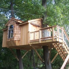 Dream house tree house, with an entry way to boot!