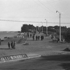 Negatywy - Gdynia lat XX w. 30th, Fotografia