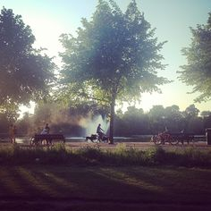 Taken on last night's walk home through beautiful Victoria Park in East London. Bikes, dogs, fountains and trees - what more could you want of a summer evening?