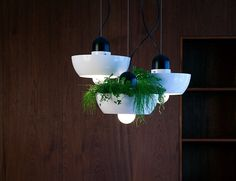Add some life, and light, to your space with the Well #Light #Planter by Object/Interface.