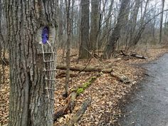 Tinker Nature Park in Henrietta is now home to a collection of fun Fairy Houses lining parts of the walking trail