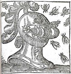 Abeilles casque emblemata, emblemes alciato andrea 1584