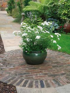 A large green urn full of white blooms is positioned in the middle of this stone and brick path.