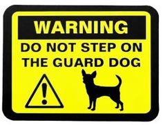 WARNING ~ Do not step on the guard dog, lol!