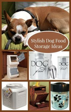 Check out these stylish yet functional dog food storage ideas for your home!