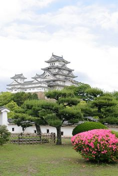 Himeji castle, Japan, 2008 Himeji Castle, Japanese Castle, Sacred Architecture, Places Ive Been, Sunrise, Environment, Journey, Culture, Rising Sun