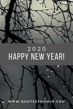 Happy New Year Quotes : Happy New Year Greetings 2017 Inspirational Messages Wishes & Cards New Year Wishes Messages, Happy New Year Message, Happy New Year Quotes, Happy New Year Wishes, Happy New Year Greetings, Quotes About New Year, Funny Messages, Happy Quotes, Life Quotes