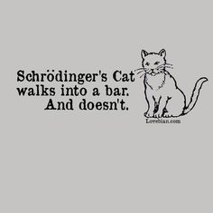 """Schrodingers Cat Unisex and Women's """"Favorite"""" Tee $20 Save 30% with promo code PINTEREST at checkout"""