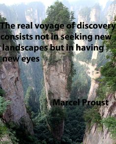 The  real voyage of discovery consists not in seeking new landscapes but in having new eyes. -Marcel Proust