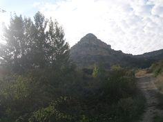Buenos días crivillenenses, feliz fin de semana para tod@s, disfrutad de la naturaleza