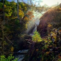 We can't blame @victoriaharvey_ for stopping to catch the sunlight at #VictoriaFalls at #LochMaree in #WesterRoss, it's so #beautiful!