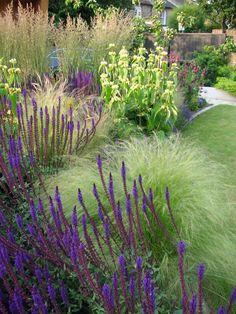 Salvia, phlomis and grasses Gravel Garden, Garden Plants, Shade Garden, Love Garden, Dream Garden, Back Gardens, Outdoor Gardens, Evergreen Landscape, Stipa
