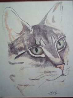 Checkout this amazing deal Cat Portrait,$10