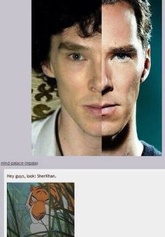 SHER-KHAN is actually happening!! Benedict to voice Shere-Khan in 'Jungle Book'