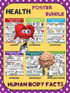 Health and Science Poster Bundle: Human Body Facts.- 6 Contemporary Posters