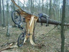 drunk wrecked bike into tree ,took trre down..