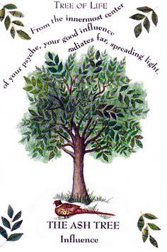Celtic Astrology -  - FEBRUARY 18 - MARCH 17 - THE ASH TREE