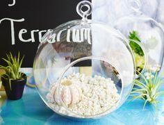 NEW SIZE Medium Large Glass Globe by BeachCottageBoutique on Etsy, $18.00
