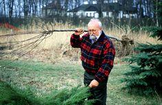 Krzysztof Penderecki doing yardwork.