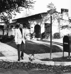How cool is this – old school superstar Cary Grant walking his cat!