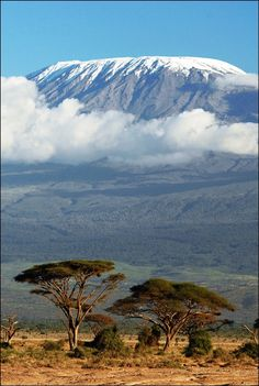 Summit Mt Kilimanjaro. Tanzania.  Can't wait to train for this hike this year!  I need an adventure so bad!