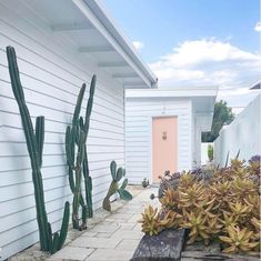 my scandinavian home: Before and After: A Dreamy Beach House On Australia's Gold Coast Pink Tiles, Glass Fence, Wood Cladding, Old Bathrooms, Nature Aesthetic, Australian Homes, Scandinavian Home, Gold Coast, House Tours