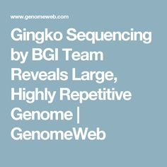Gingko Sequencing by BGI Team Reveals Large, Highly Repetitive Genome | GenomeWeb