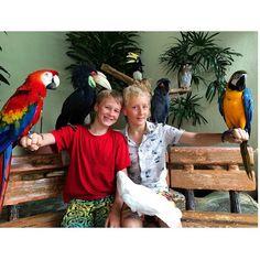 How many birds can you fit on two young boys ??? #upsticksandgo #birds #kualalumpurbirdpark #KL #naturephotos #travellingwithkids #travellingtheworld #malaysia #travelgram #travelphotos #birdsoftheworld #happykids #kualalumpur | Flickr - Photo Sharing!