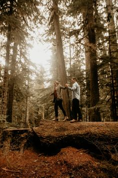 hiking pictures couple and hiking pictures Mount Rainier Forest engagement photography - woodsy engagement photo. Forest Engagement Photos, Engagement Photo Poses, Engagement Pictures, Engagement Photography, Wedding Pictures, Engagement Shots, Country Engagement, Winter Engagement, Beach Engagement