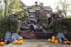 Halloween Decor 047 copy.jpg