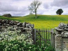 BEST OF BOTH WORLDS.... STONE WALL AND OLD GATE!