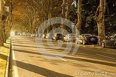 Beautiful sunny afternoon Andalucia Malaga Spain. Paseo de los Curas street. Malaga City, Beautiful, Walks