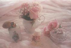 jessica rosa